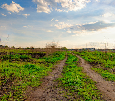 Rural spring landscape with dirt road